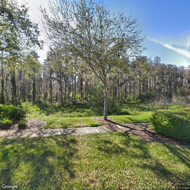 19445 Shumurd Oak Drive, Land O Lakes, FL, 34638